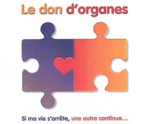 don_organe_puzzle