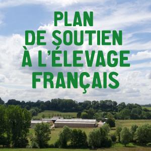 plan-elevage